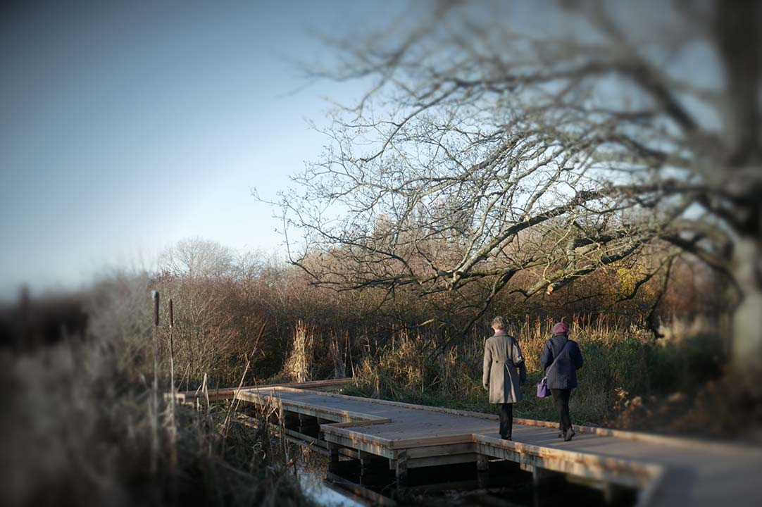 Outdoor life coaching in London